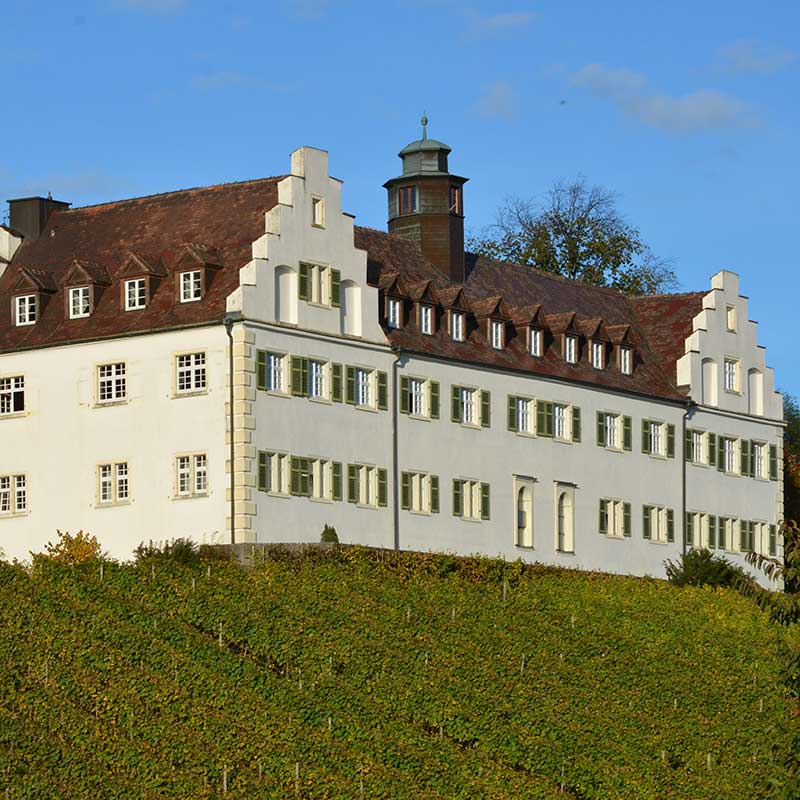 gaestehaus-st-josef-schloss-hersberg-immenstaad-aussenansicht-DSC-5172-4928x3264px-rgb-pallottiner