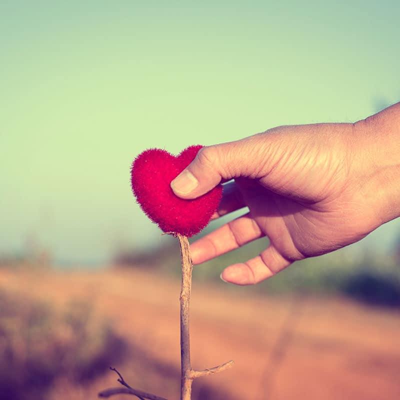 Herzlichkeit der Pallottiner