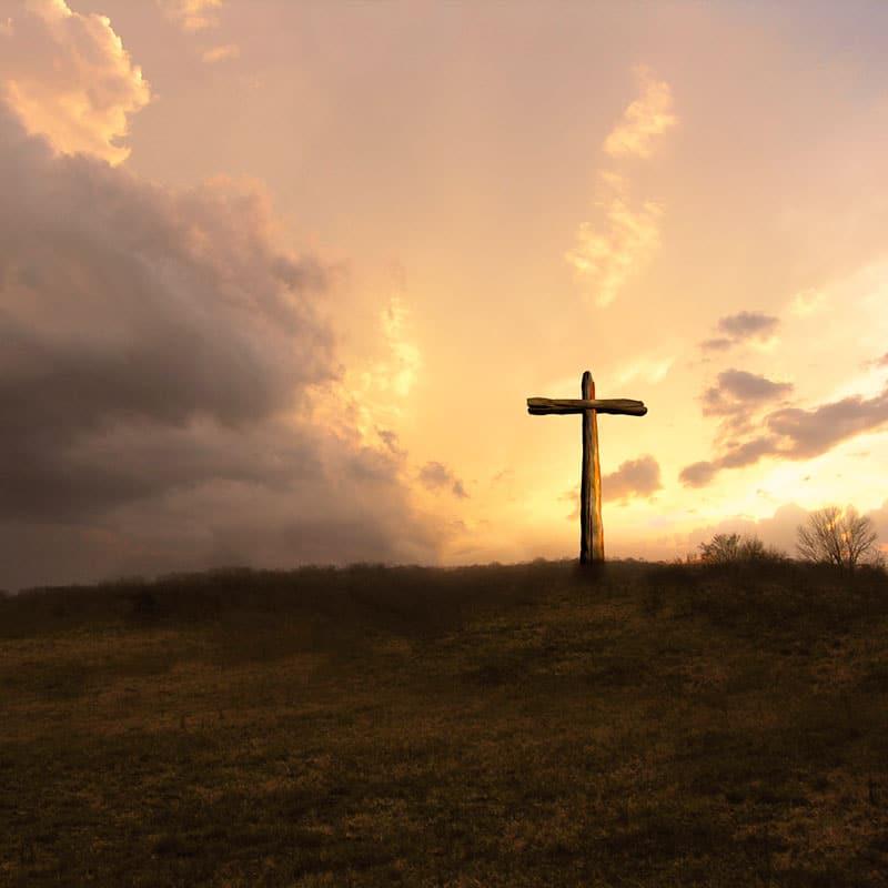 Optimismus - die Pallottiner und die Kirche