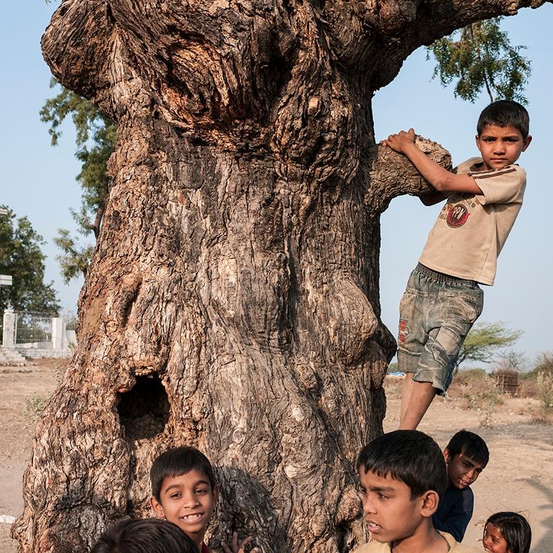 Children Homes India Pallottines