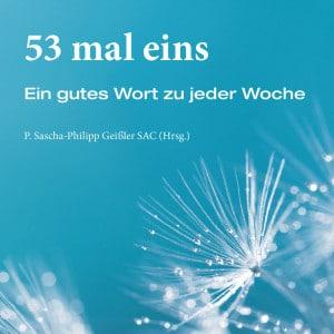 Geschenkbuch 53 mal eins