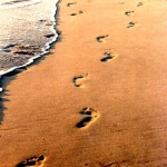 Spiritualität der Pallottiner - Dynamik und Wandel