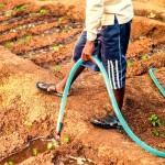 Missionsprojekt Nachhaltigkeit