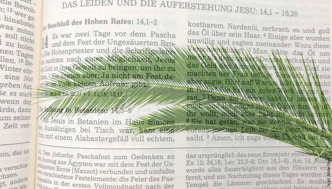 Das Leiden und die Auferstehung Jesu - Einzug in Jerusalem