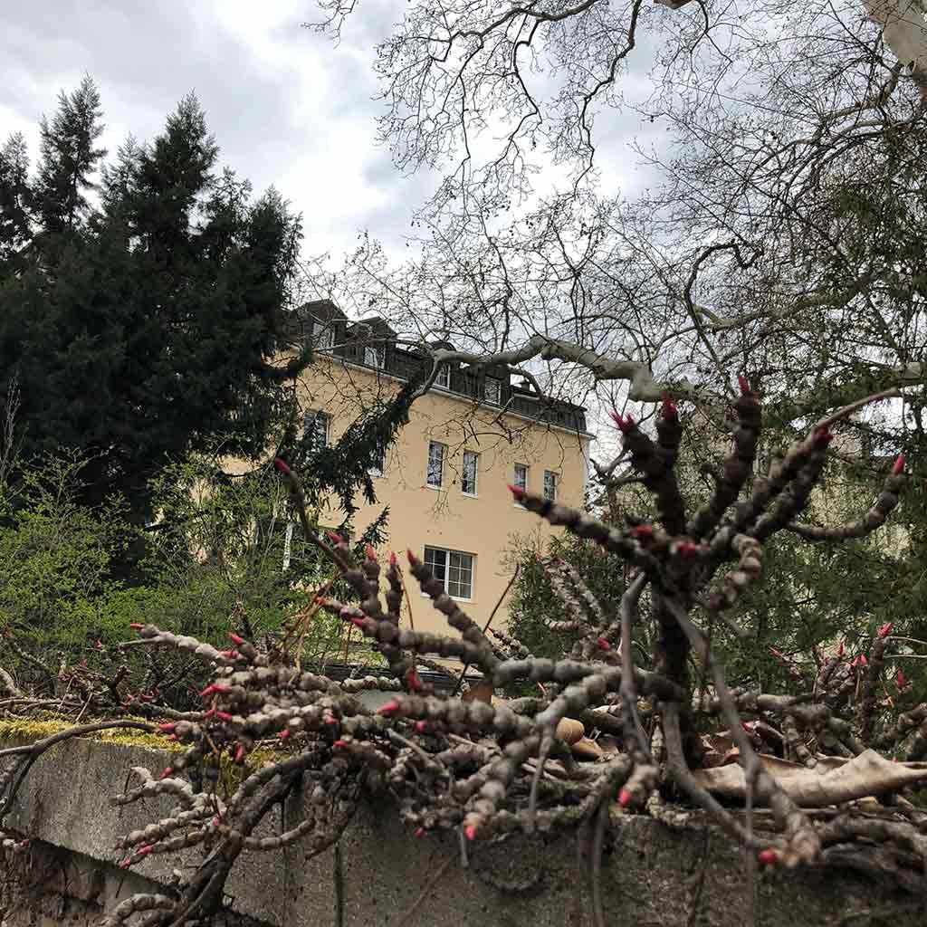 Blick über die Mauer Christliches Hotel der Pallottiner in Wien