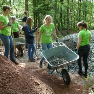 Bau des Waldforums auf dem Klosterberg