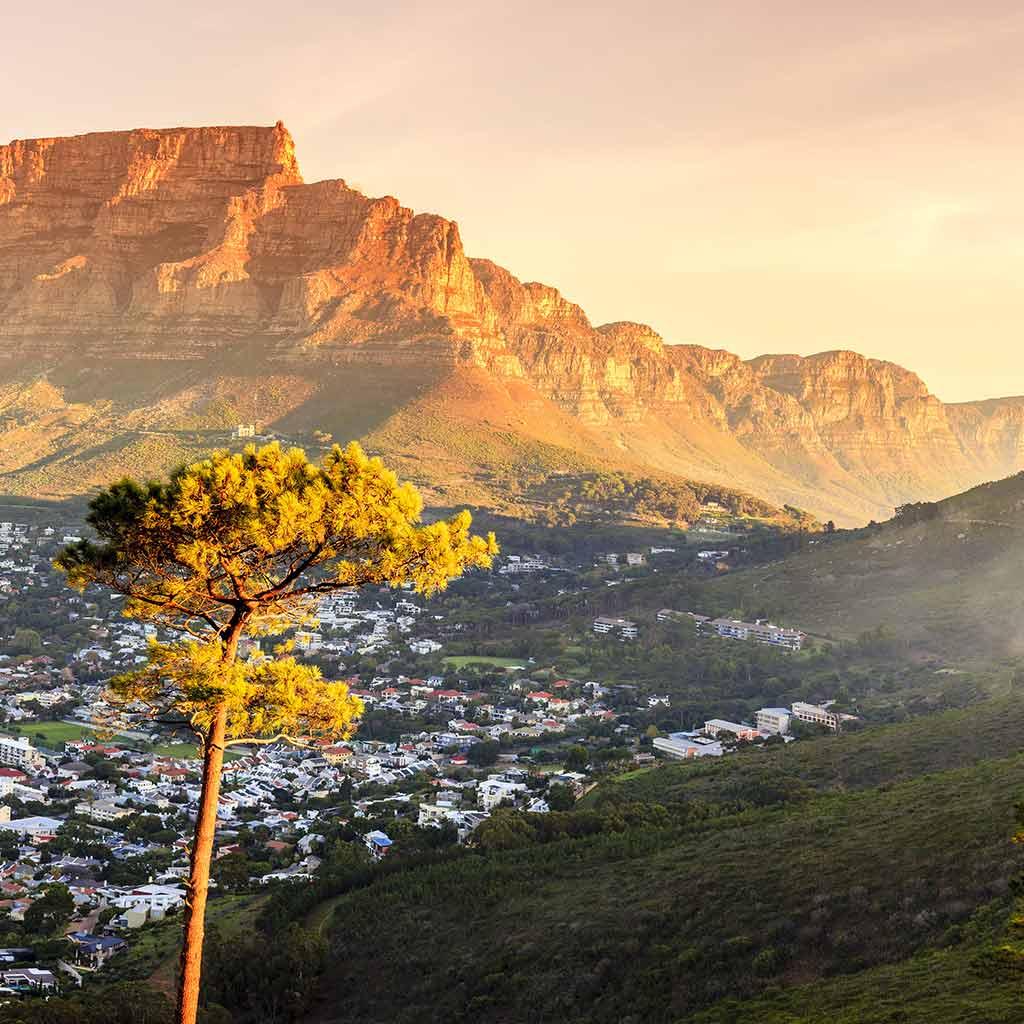 Die ersten Pallottiner kamen 1922 in Kapstadt an