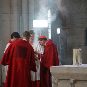 Seligsprechung von Pater Richard Henkes im Dom zu Limburg