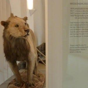 Ehemaliges Missionsmuseum der Pallottiner in Limburg