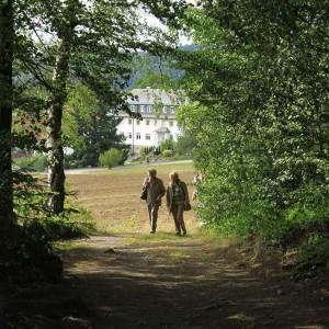 Spaziergang im Wald beim Gästehaus der Pallottiner in Hofstetten