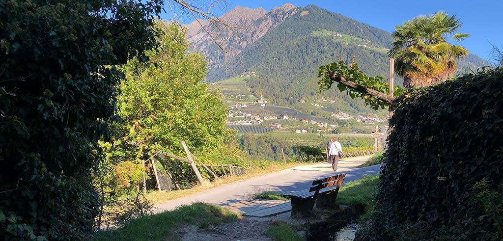 Waalweg von Meran nach Saltaus - der Maiser Waalweg