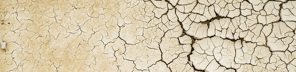 Gobal relevant: die Klimakatastrophe